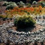637-1-garden