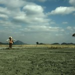 3656-01-landofscarecrows