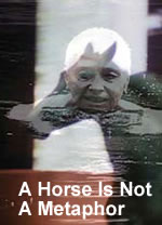 A Horse Is Not A Metaphor