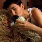 4296-04-sheepandtheranchhand