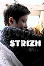 Strizh