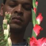 3361-13-fairytaleofkathmandu