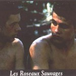 1556-2-roseaux-sauvages-b