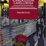 Il ragazzo dai capelli rosa di Davide Viola: sintesi del libro e intervista all'autore